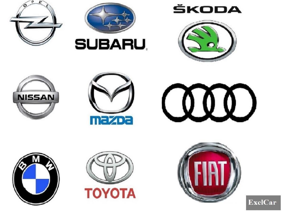 Najczęściej wypożyczane marki samochodów exelcar